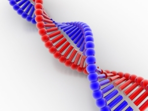 Define Your Brand DNA and You Will Reach Your Goals Soon!