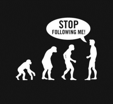 funny evolution