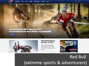 Screenshot taken from Red Bull website